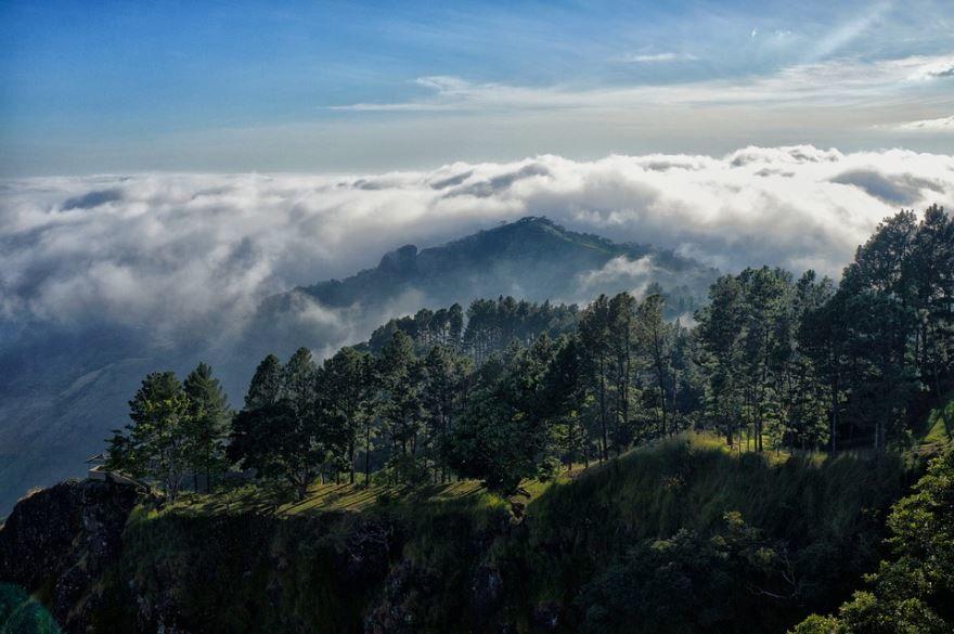 Природа города Сан-Сальвадор
