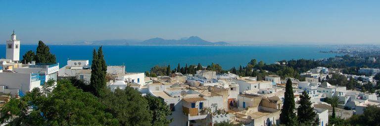 Панорама город Тунис