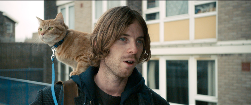 Смотреть бесплатно постеры и кадры к фильму Уличный кот по кличке Боб онлайн