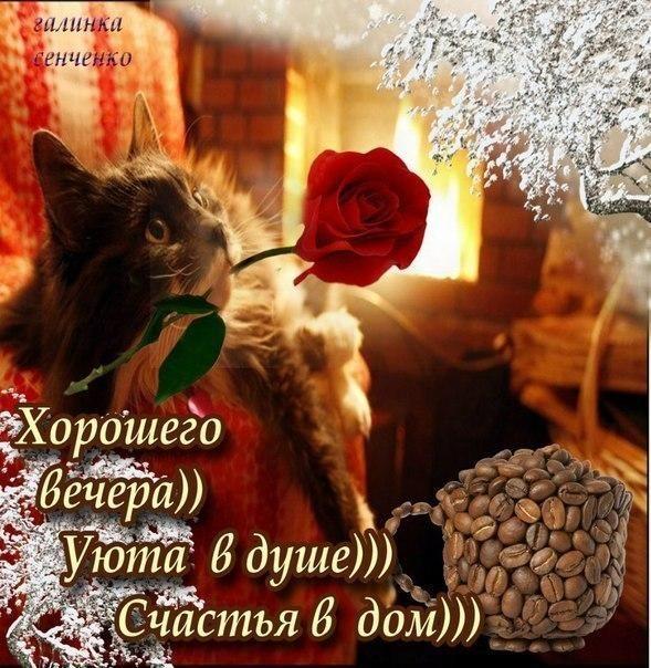 Добрый вечер и прекрасного настроения