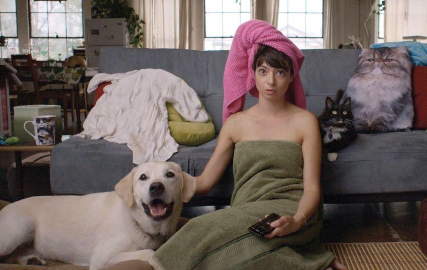 Скачать бесплатно постеры к фильму Мои парни – животные в качестве 720 и 1080 hd