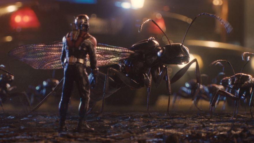 Бесплатные кадры к фильму Человек-муравей  в качестве 1080 hd