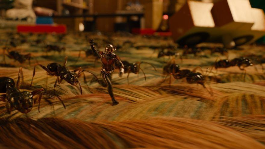 Лучшие картинки и фото фильма Человек-муравей  2015 в хорошем качестве
