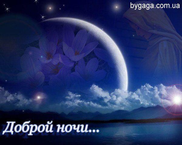 Прикольная картинка пожелания Доброй ночи.