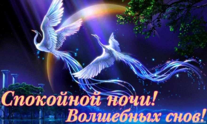 Доброй ночи, спокойной ночи красивая открытка