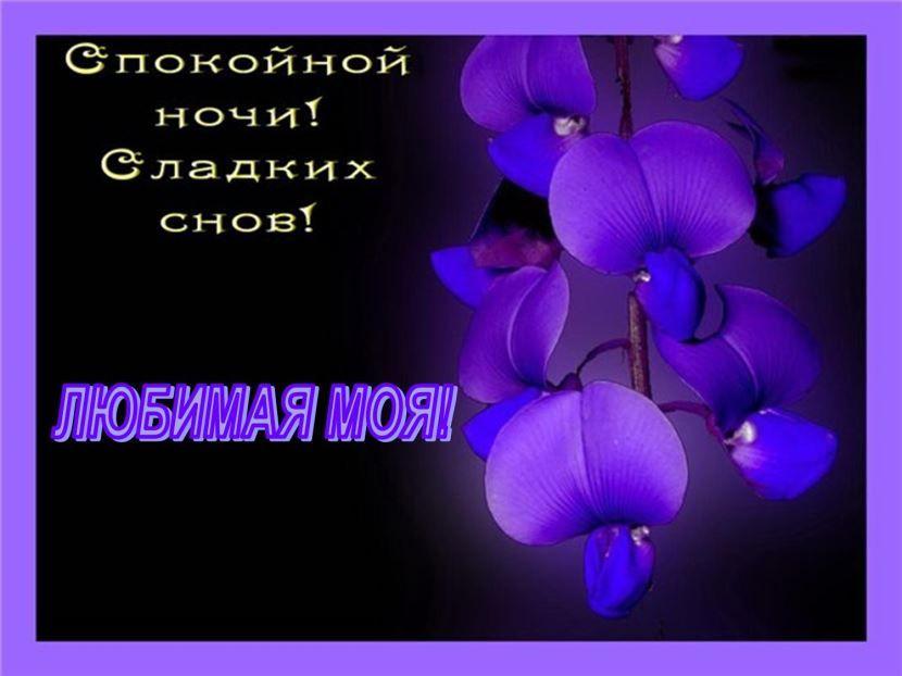 Скачать доброй ночи любимая красивую открытку