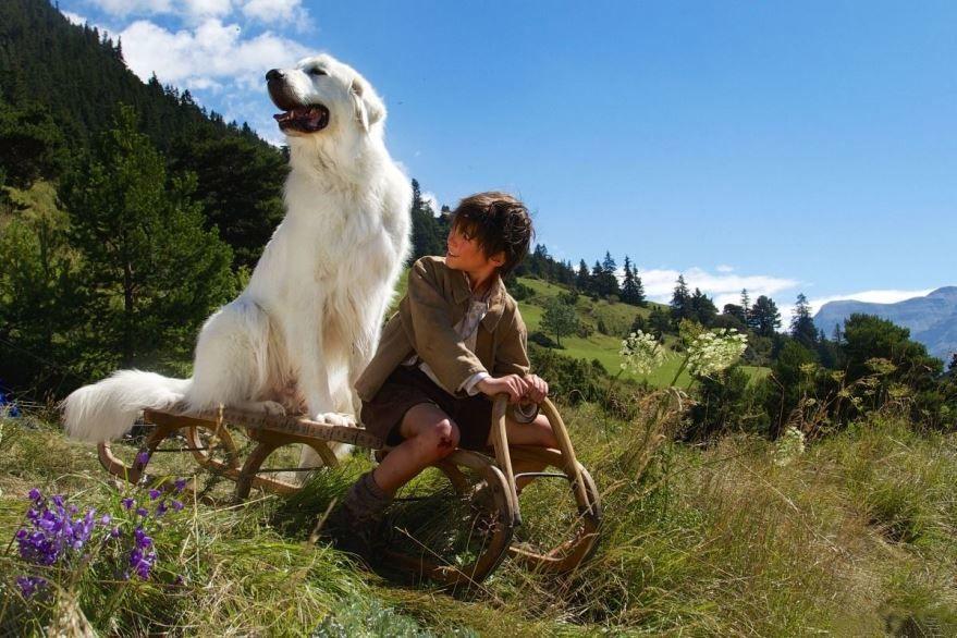 Бесплатные кадры к фильму Белль и Себастьян: Приключения продолжаются в качестве 1080 hd