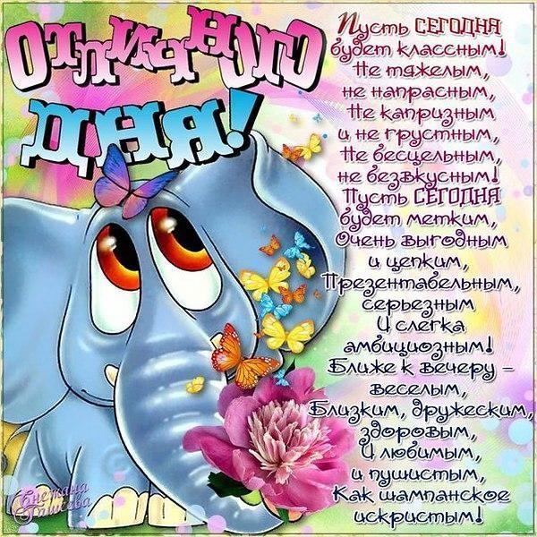 Поздравление, смешные открытки с пожеланиями доброго дня