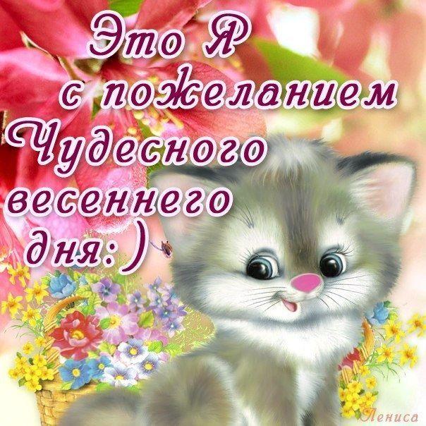 Пожелание доброго весеннего дня.
