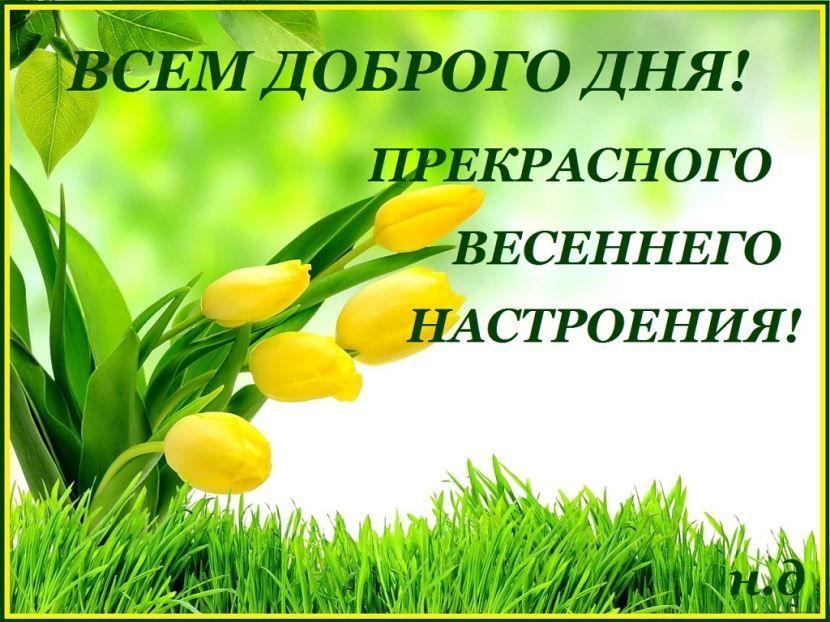 Пожелание доброго весеннего дня красивая картинка