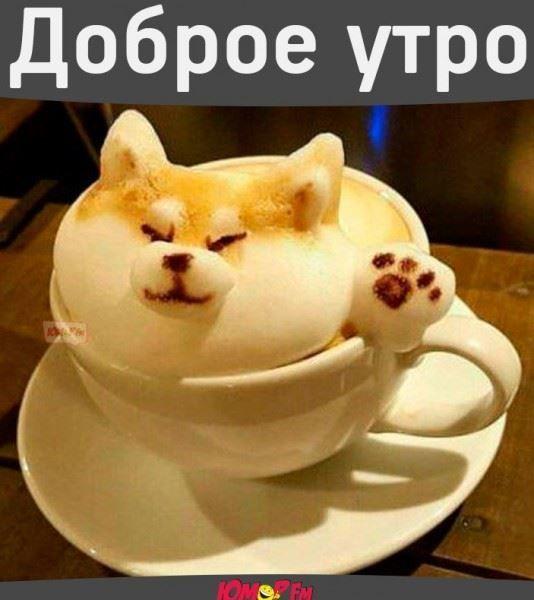 Красивые русские шрифты для Ворда и Фотошопа  установка