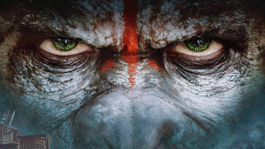 Кадры к фильму Планета обезьян: Революция в качестве 1080 и 720 hd бесплатно