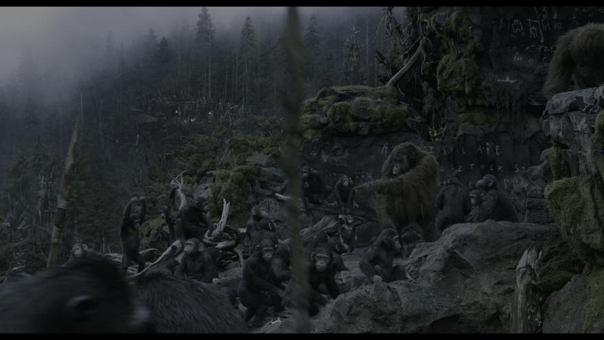 Красивые картинки и фото к фильму Планета обезьян: Революция 2014 в hd качестве онлайн