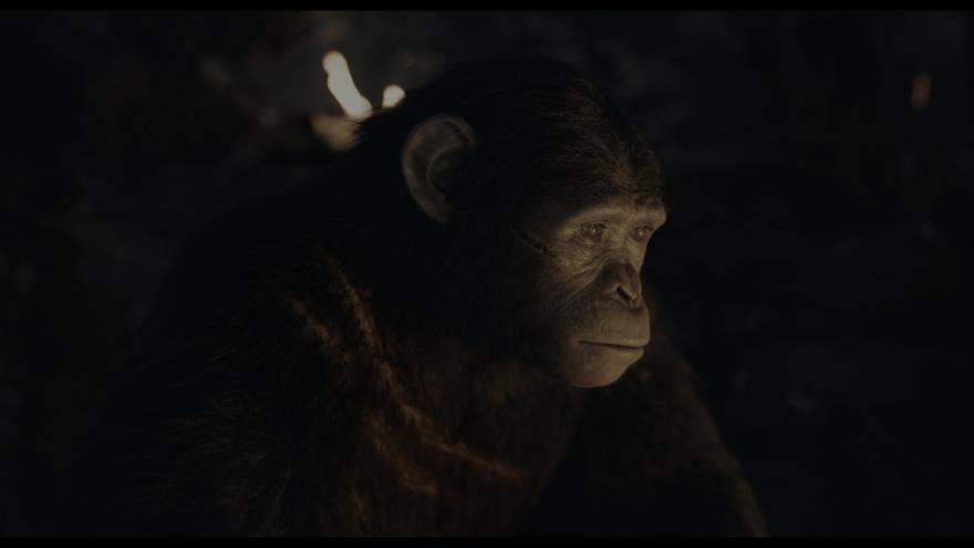 Смотреть онлайн кадры и постеры к фильму Планета обезьян: Революция бесплатно