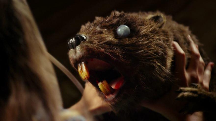 Кадры к фильму Бобры-зомби в качестве 1080 и 720 hd бесплатно
