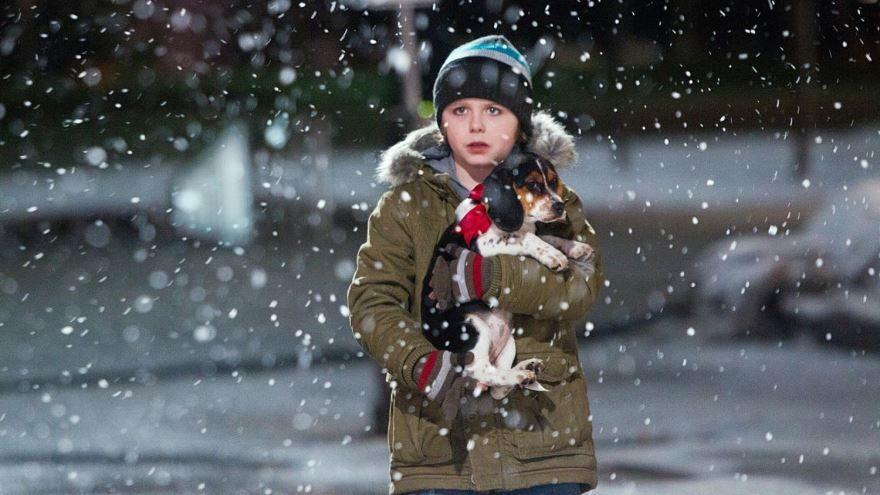 Кадры к фильму В канун Рождества в качестве 1080 и 720 hd бесплатно