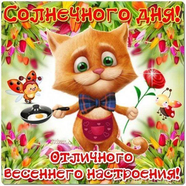Скачать бесплатно красивую открытку доброе утро хорошего дня