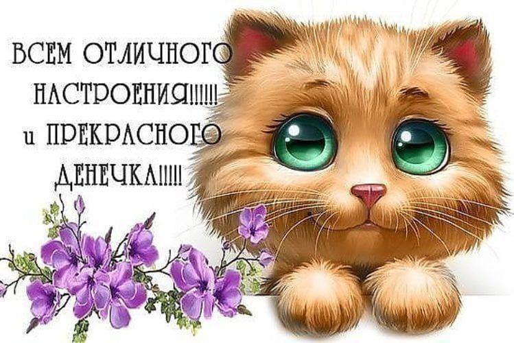 Доброго дня и прекрасного настроения