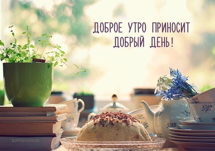 Доброе летнее утро