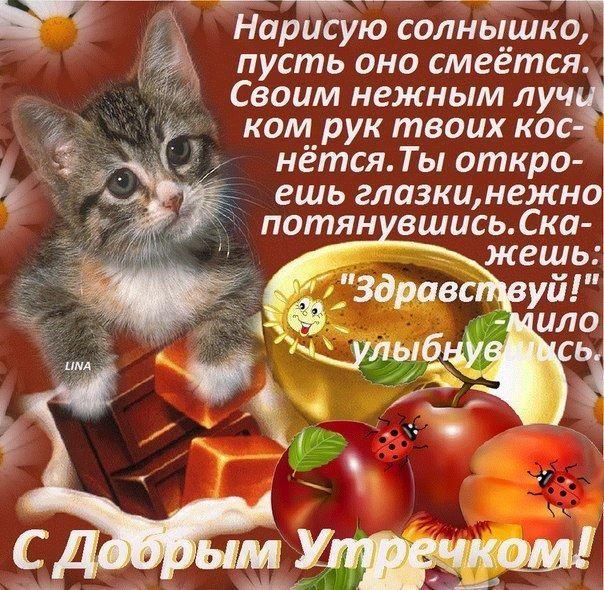 Пожелания с добрым утром красивая открытка