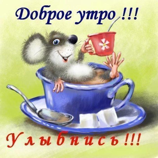 https://cepia.ru/images/u/pages/527/dobroe-utro-23.jpg