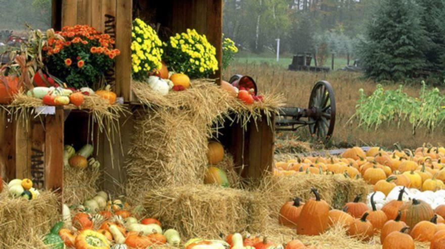 Какие праздники осенью?