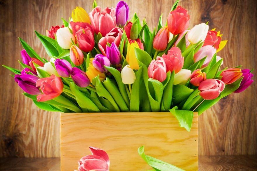 Праздник - 8 марта красивая открытка