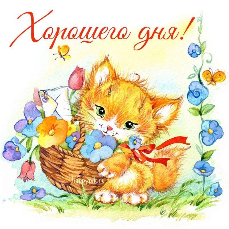Детские открытки с кошками, надписью саша