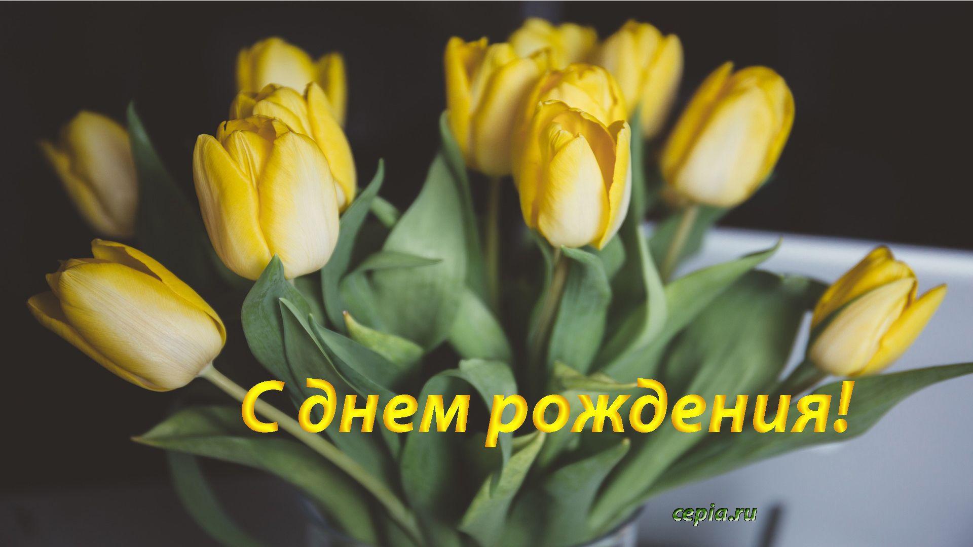 Картинка С днем рождения с красивыми желтыми тюльпанами
