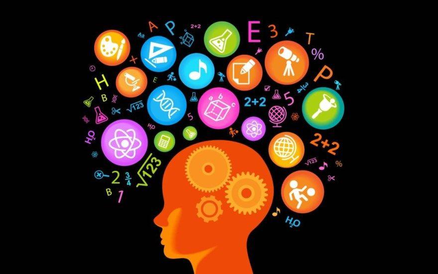 Развитие мозга советы образ жизни привычный