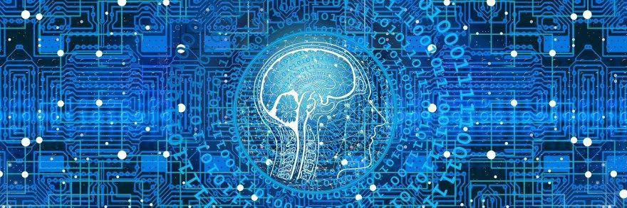 Способности мозга, развитие мозга, развитие способностей мозга, память, Роджер Сайп