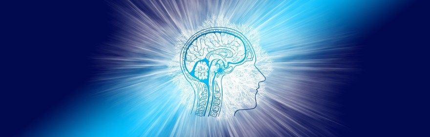 мозг на 100 процентов работает интеллект память развитие