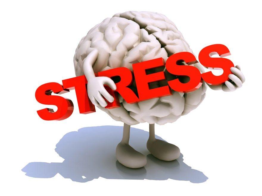 Как стресс влияет на мозг память концентрация