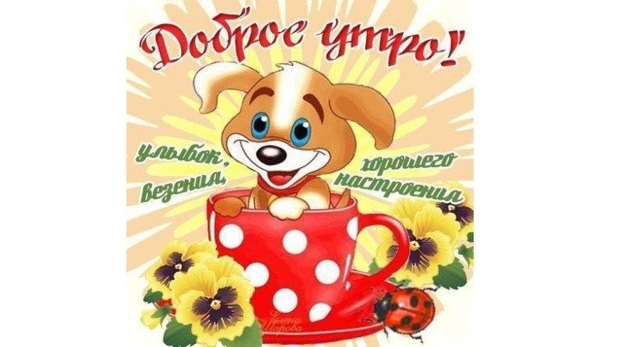 Открытки доброе утро хорошего дня картинки пожелания