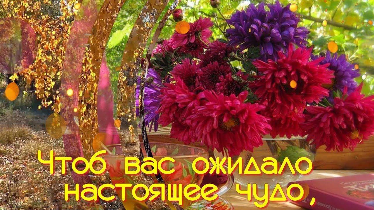 Картинки, открытки и пожелания доброго осеннего утра. Пожелайте хорошего утра осенью любимым людям. Бесплатно.