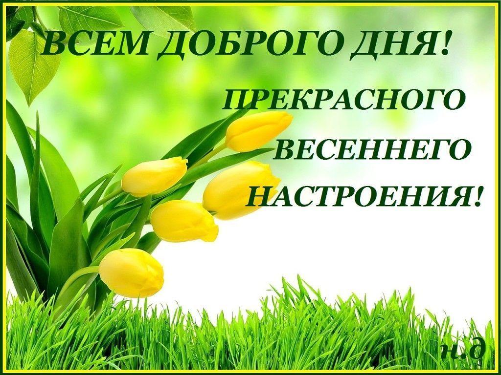"""Красивые открытки, картинки и пожелания """"Доброго весеннего утра"""". Пожелайте хорошего утра весной любимым людям. Скачать можно бесплатно."""