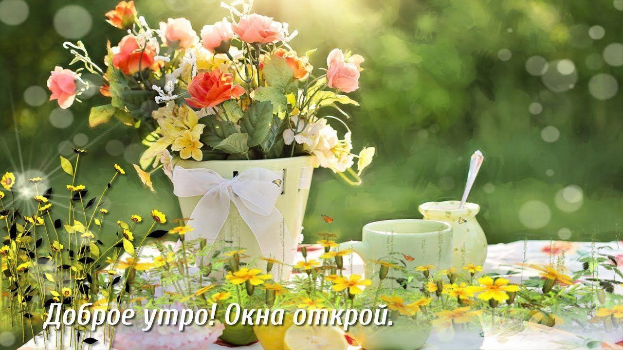 Доброго летнего утра картинки открытки пожелания