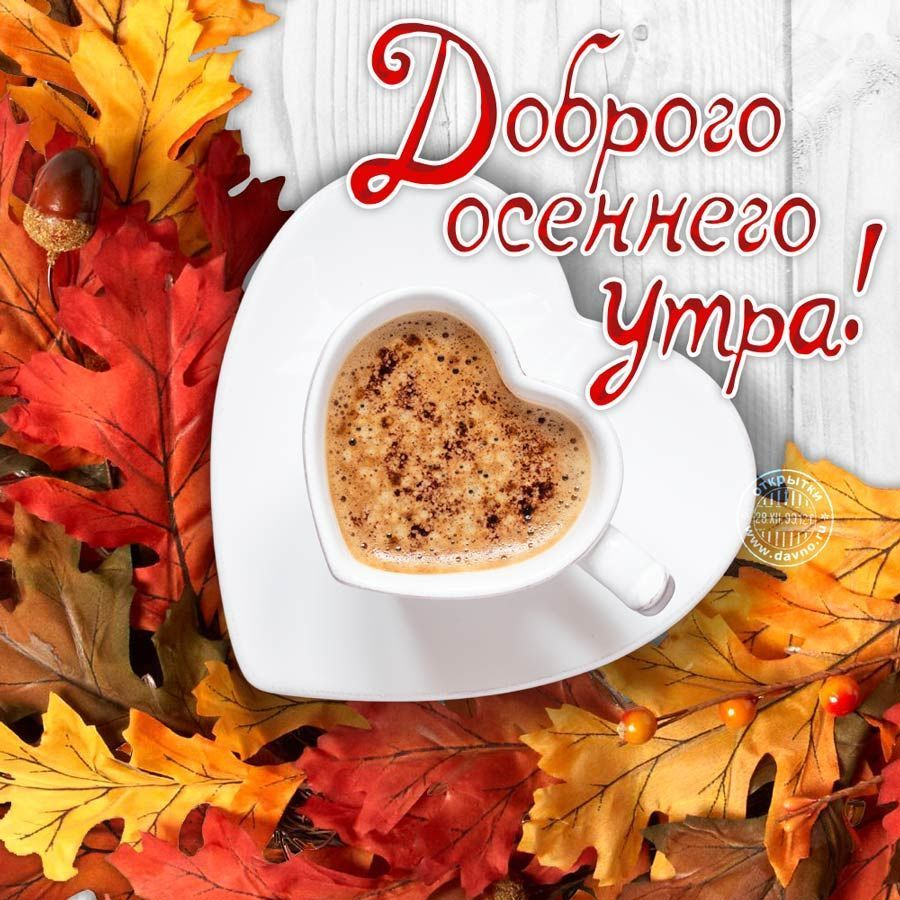 Доброго осеннего дня - картинки, открытки, пожелания. Отличные картинки для создания прекрасного настроения знакомым, родным, любимым.