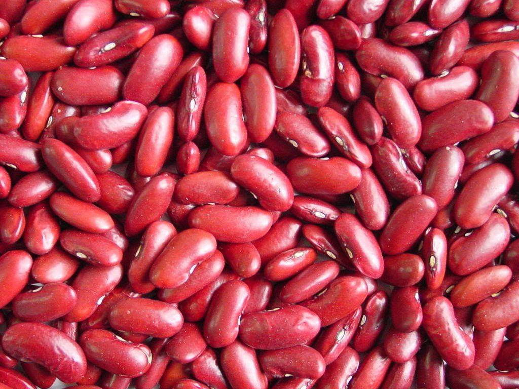 Фасоль рецепты салат красная стручковая консервированная фото вкусная суп белая сухарики лобио курица приготовить как блюда очень зеленая просто кукуруза