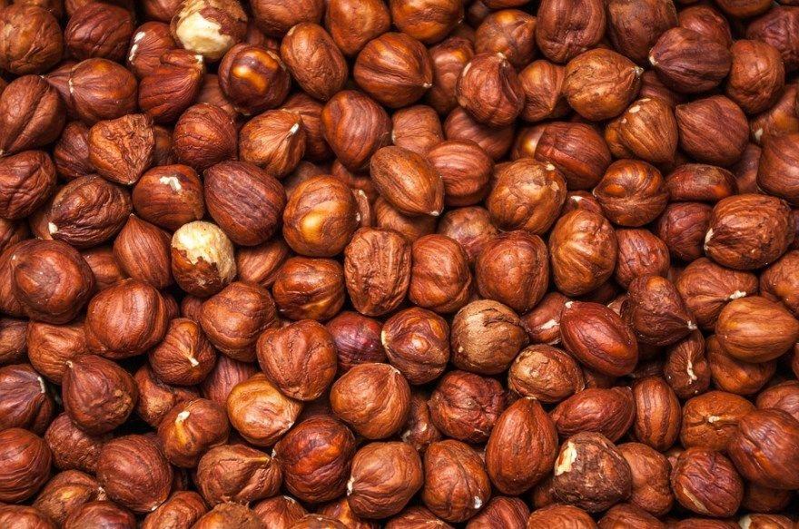 Фундук орех польза купить вред саженцы фото свойства полезные чем полезен калорийность лещина домашний осенью какой миндаль сколько сорта лесной для организма