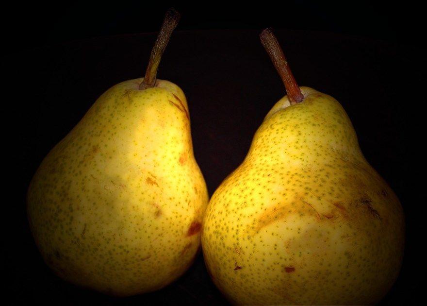 Груша яблоко сорта фото писание купить отзывы описание боксерская на зиму осенью сколько бывшие какая 3 4 варенье рецепты пирог слива кресло фрукт домашняя