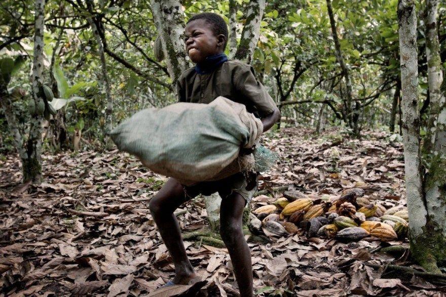 бедность ошибочные решения интеллект плохие решения питание образование