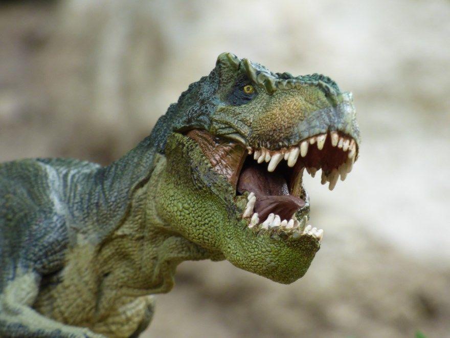 Динозавр картинки фото для детей настоящий хищный большой статуя фигура