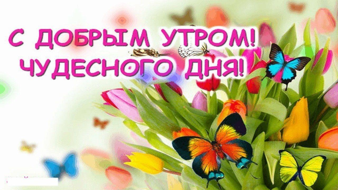 https://cepia.ru/images/u/pages/kartinki-s-dobrym-utrom-i-horoshego-nastroeniya-cover-515.jpg