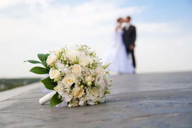 Картинки со Свадьбы молодожены красивые снимки романтика