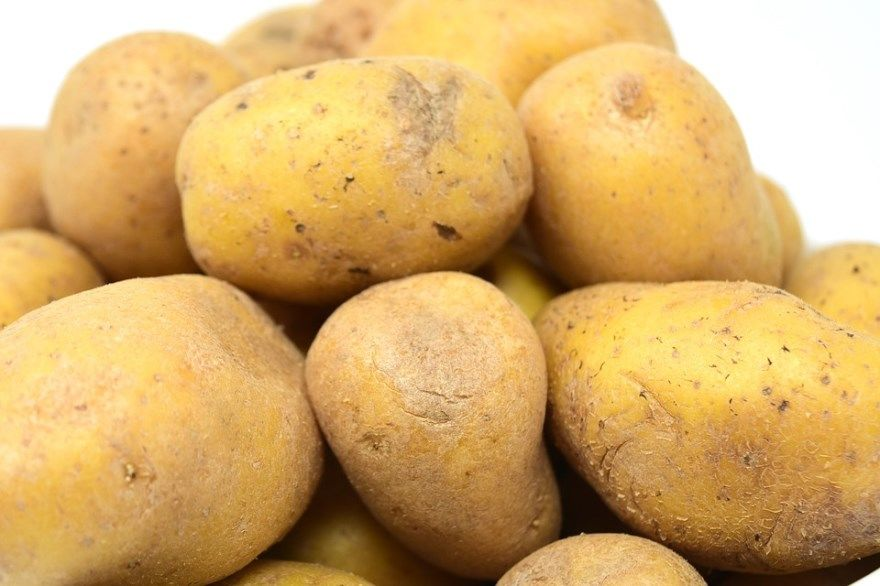 Картофель фото рецепты духовке сорта описание фаршем отзывы запеканка фото картинки по французски простые блюда деревенски с сыром