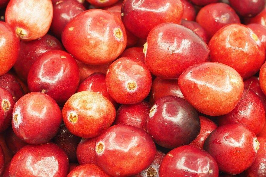 Клюква фото рецепт пирог как растет ягода на болоте морс ру пошагово брусники домашняя простой отзывы в сахаре как выглядит мебель кисель