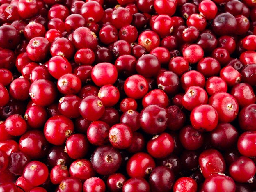 Клюква фоо рецепт пирог как растет ягода на болоте морс ру пошагово брусники домашняя простой отзывы в сахаре как выглядит мебель кисель