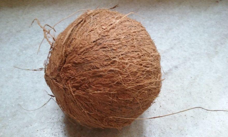 кокос фото купить в домашних условиях открытый расколотый полезные масла для здоровья магазин уход пальма
