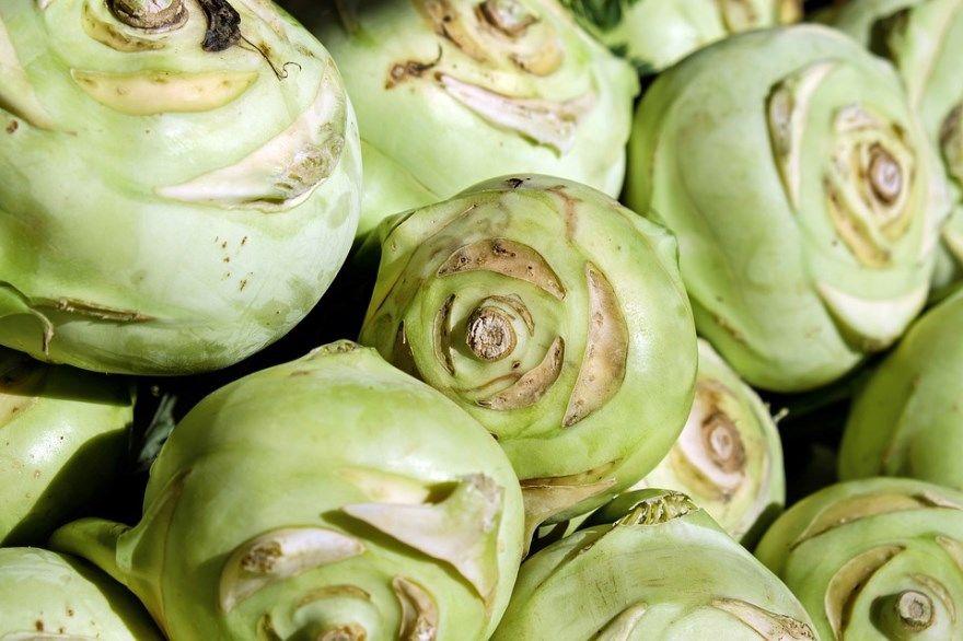 Кольраби капуста рецепты фото род приготовление салат существительное какая вкусная слово род салат польза вред вкусные можно приготовить свежая словосочетание прилагательное блюдо